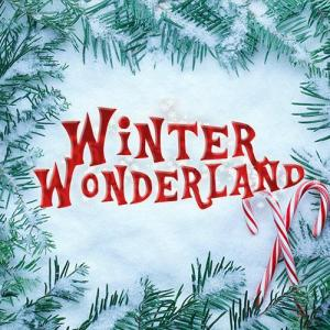 Winter Wonderland Manchester discount